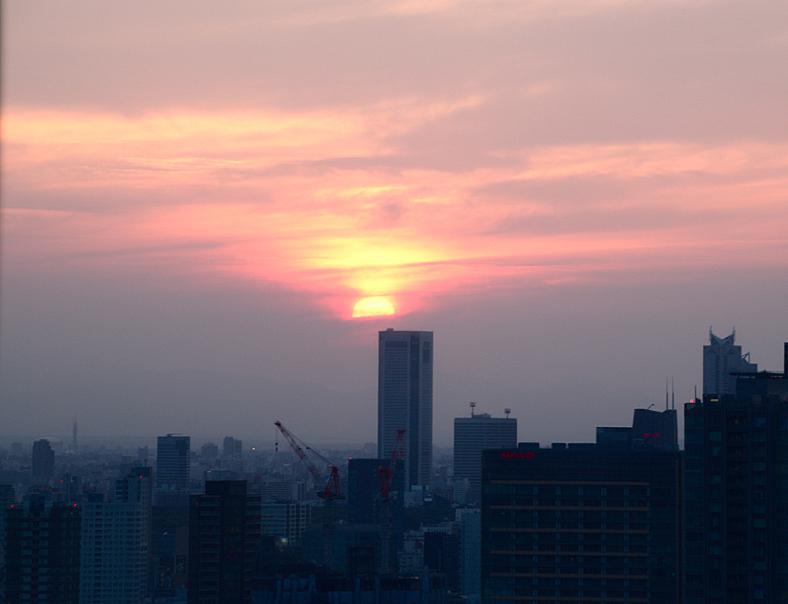 vistas de Tokio desde la Tokyo Tower1