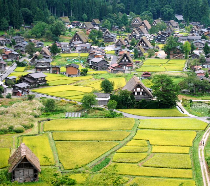 Foto de Shinkon Japón de Shirakawa-go