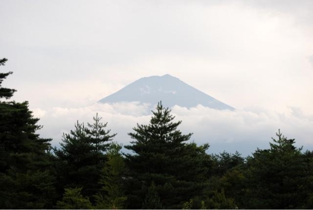 Foto de Shinkon Japón del Monte Fuji