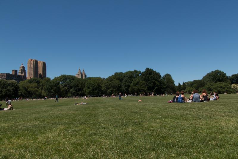 Sheep Meadow en Central Park de Nueva York