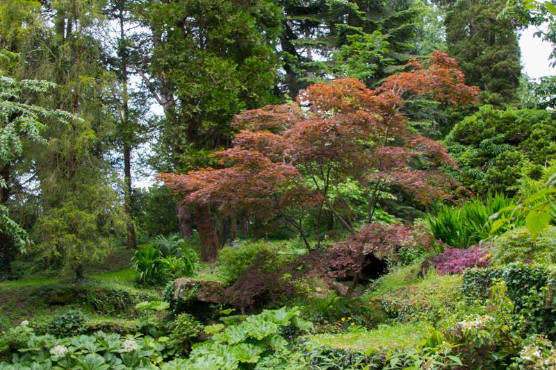 Batsford Arboretum 1