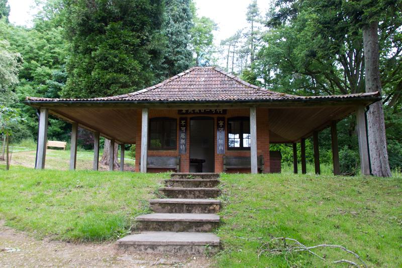 Batsford Arboretum 5