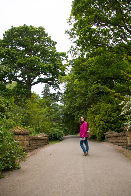 Batsford Arboretum 2