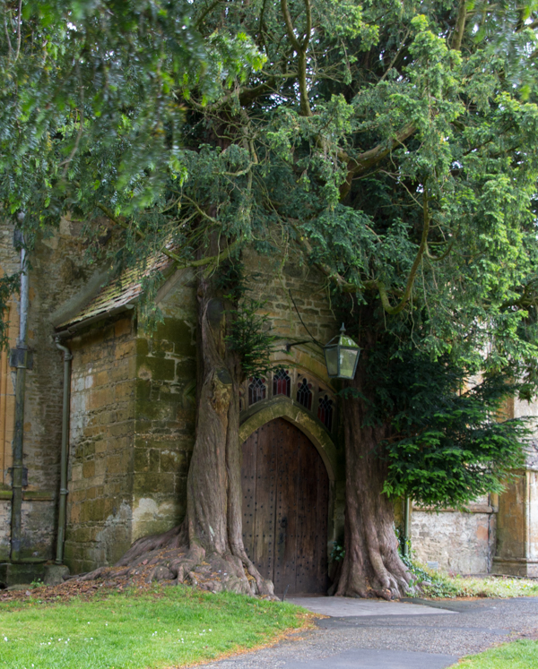 puerta de St. Edward's Church en Stow-on-the-Wold 1