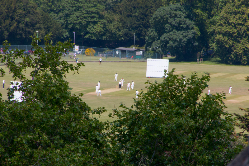 partido de cricket en Windsor