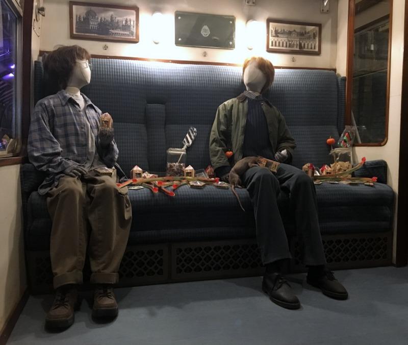 Harry y Ron en el Expreso de Hogwarts