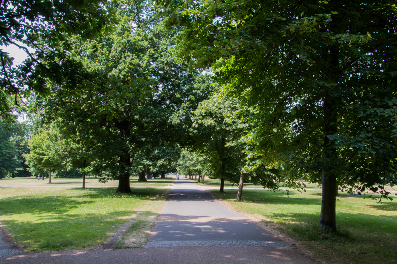 sendero en Hyde Park