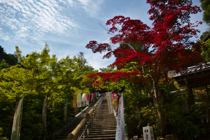 escaleras del templo Daisho-in en Miyajima