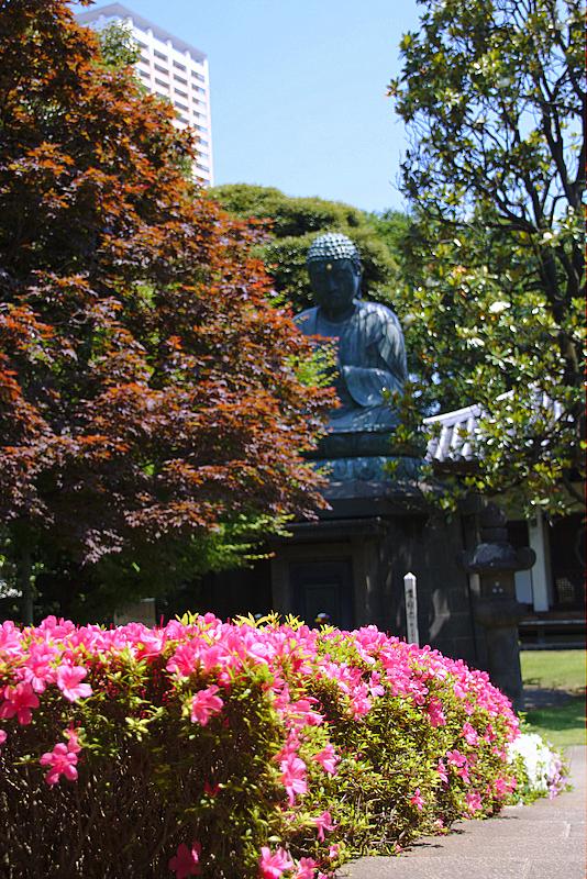 jardín en el cementerio del barrio de Yanaka en Tokio