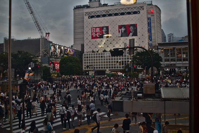 cruce de Shibuya en Tokio con gente pasando visto desde el Starbucks