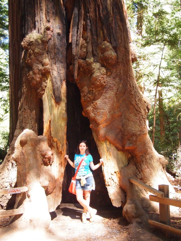 Lidia bajo una sequoia del Monumento Nacional de Muir Woods