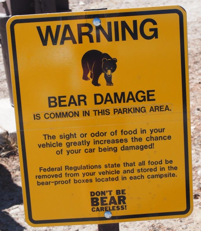 aviso de los rangers de Yosemite sobre los osos