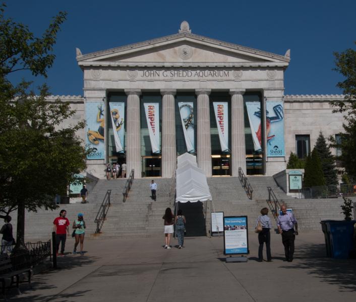 Shedd Aquarium de Chicago en Museum Campus
