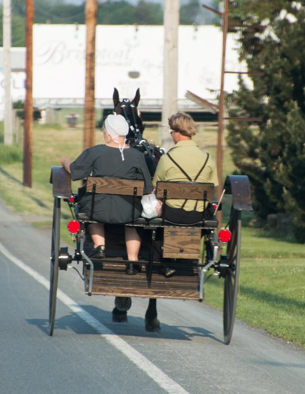buggy de Amish en el Condado de Lancaster Pensilvania 1