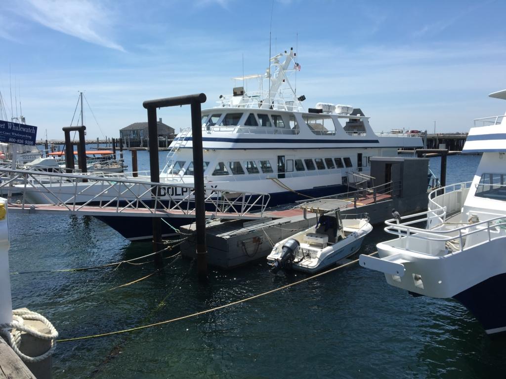 barco Dolphin X en Provincetown Cape Cod Massachussets