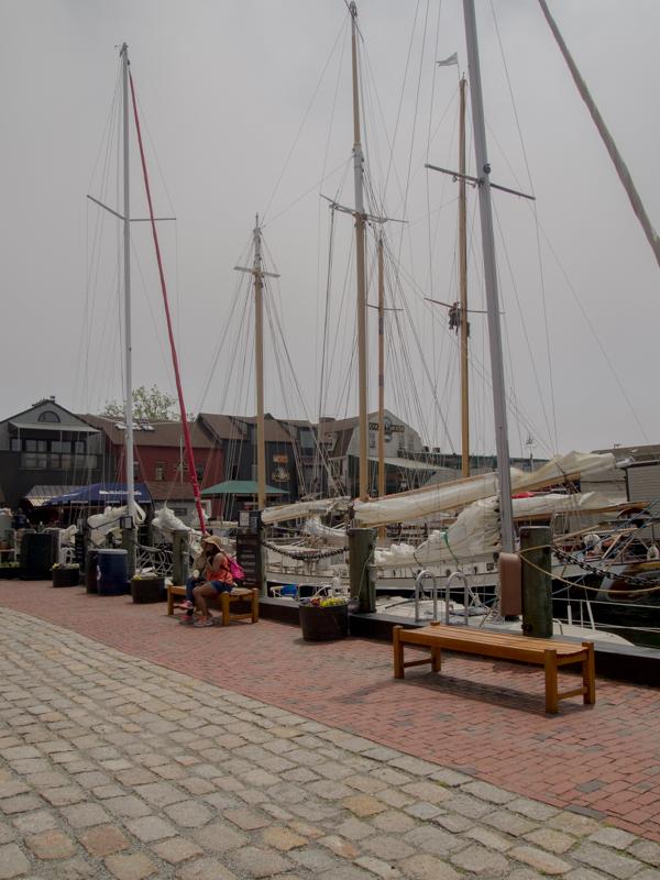 puerto de Newport en el estado de Rhode Island 2