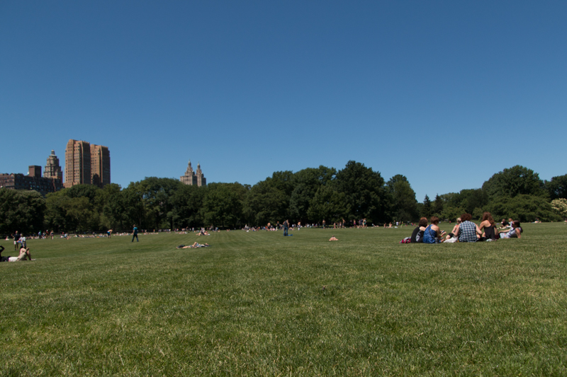 Sheep Meadow en Central Park de Nueva York