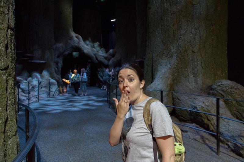Lidia entrando en el Bosque Prohibido HP
