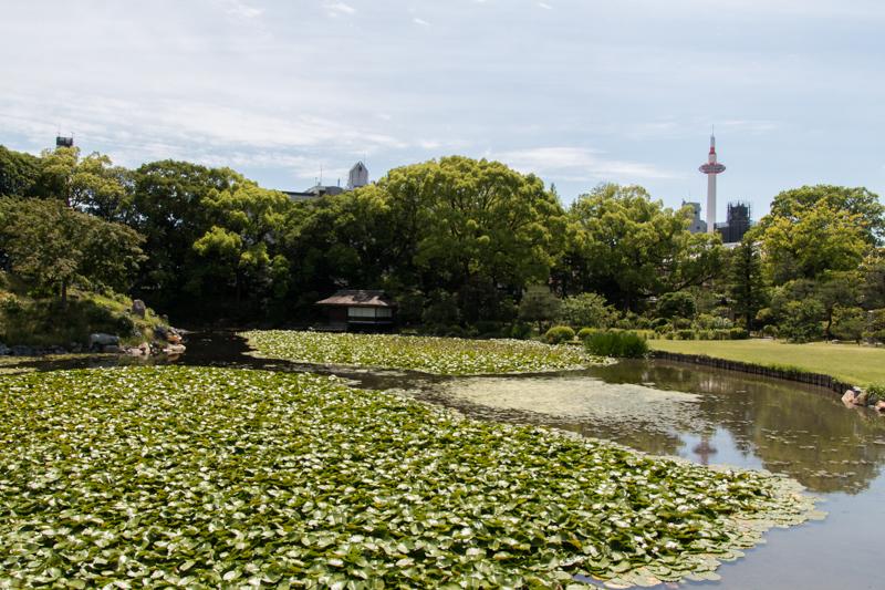 Jardín Shosei-en 2