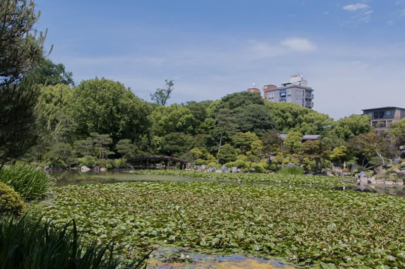 Jardín Shosei-en 1