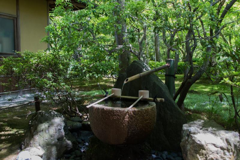 jardines del Kokedera 1