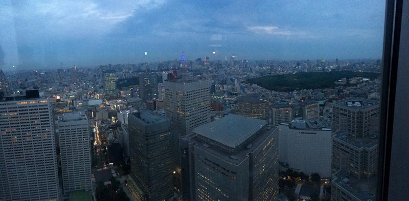 vistas desde el Tokyo Government Building 2