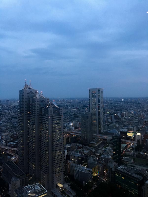 vistas desde el Tokyo Government Building 1