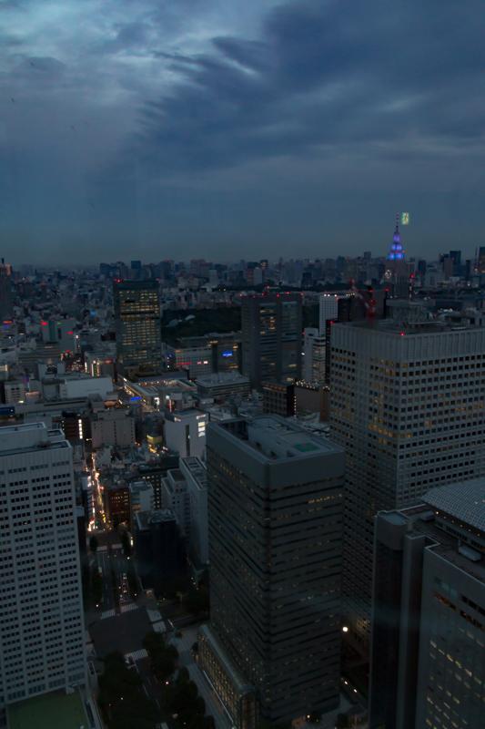 vistas desde el Tokyo Government Building 3