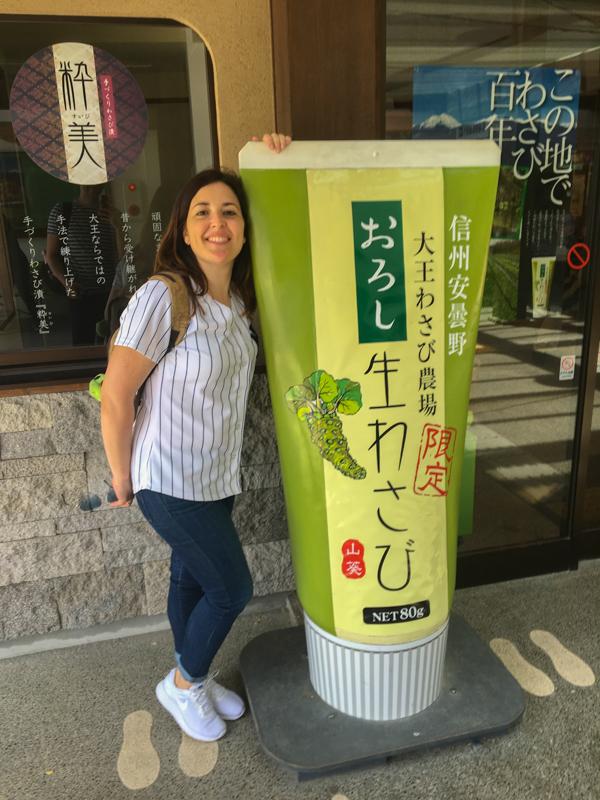 en la Granja de wasabi Daio