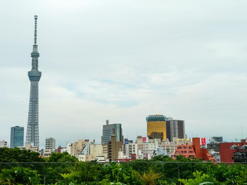 vistas desde el hotel de Tokio 1